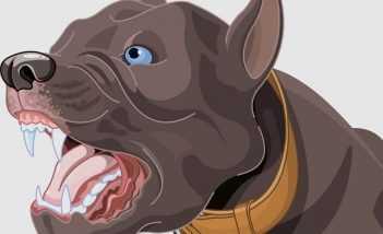 लालची कुत्ता - शिक्षाप्रद कथा