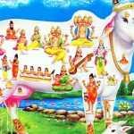 श्री गो माता जी की आरती - Shri Gou Mata ji ki Aarati